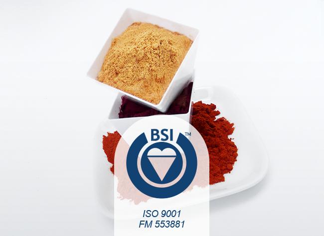 Certificaciones-bsi-vepinsa